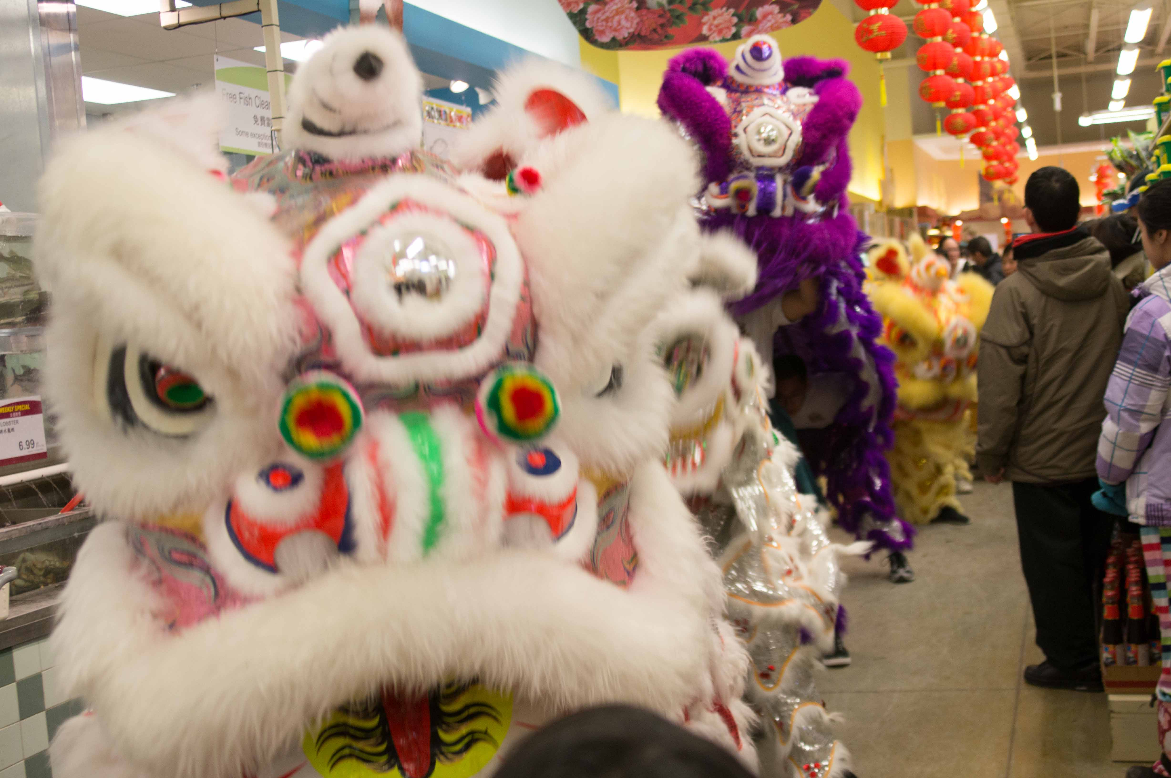 Lion Dance T&T Supermarket Feb 2013-6